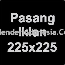 Iklan 225x225