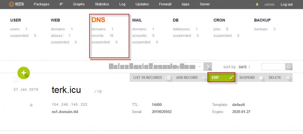 Mengedit DNS
